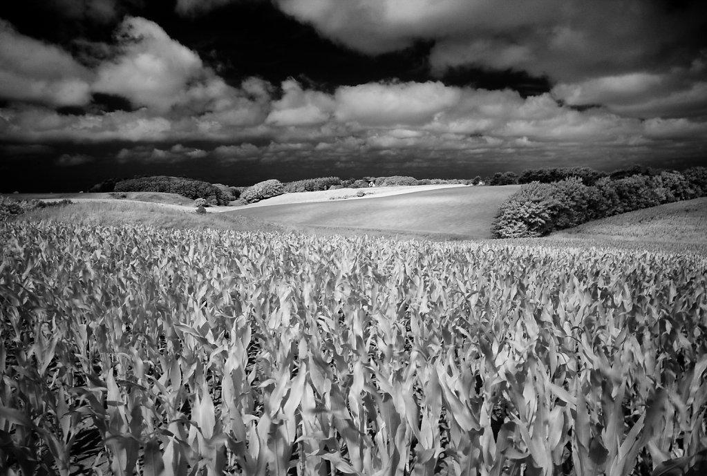 Landscape Bjergby Dk - 720nm